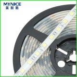 Indicatore luminoso della corda di DC12V 2835SMD 120LEDs per la casella chiara IP68