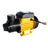 Bomba elétrica de água periférica Qb60 1/2 HP para casa