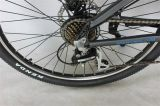 "36Vリチウム電池350W 26の山の自転車""フレーム(JSL035G-9)"