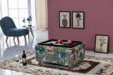 A mesa de centro fabulosa/armazenamento pequeno/sofisticou o otomano