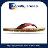 人の偶然のサンダルの靴のエヴァの双安定回路