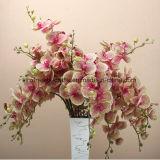 8 орхидеи Phalaenopsis высокого качества касания головок цветков реальной Silk искусственних