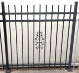 Qualsiasi rete fissa del giardino del ferro o dell'alluminio di colore