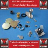 Магнит NdFeB постоянного неодимия сильный для приспособления тональнозвукового диктора акустического