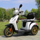 De elektrische Gehandicapte Autoped van de Mobiliteit met Ce