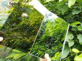 زخرفيّة لون مرآة فنّ [تمبربل] مرآة زجاج ([م-ك])