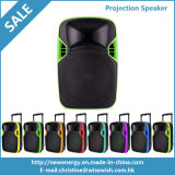 12 pouces de l'Active DEL de haut-parleur extérieur en plastique de projection avec la batterie