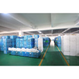 Robinet sanitaire de douche de taraud d'articles (YSQ003)
