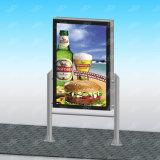 가벼운 박스 칼럼을 자전하는 튼튼한 광고 장비 포스터