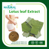 100% Natuurlijke Nuciferine 2% Poeder van het Blad van Lotus
