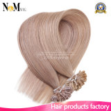 Remy Fusion Hair Extensions Cápsula de queratina natural Pré-unido U / Nail Tip Extensões de cabelo Human 100g Keratin da Malásia pura