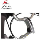 Bicyclette électrique de batterie au lithium de l'alliage d'aluminium 36V de la CE 700c (JSL036B)