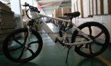 隠されたフレーム電池が付いているマグネシウム山の電気バイク