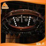 Elemento portante autonomo, anello chiaro girante, sistema dinamico del Rigger da vendere (RS01)