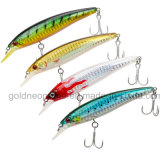 Attrezzatura molle di richiamo delle viti senza fine dell'esca di pesca (GNFL02-02)