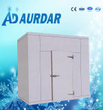 Caminata adaptable de la talla en refrigerador con acero doble del color/cámara fría en precio de la conservación en cámara frigorífica de China