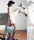 Signora di sacchetti calda delle donne di modo della spalla di vendita borse