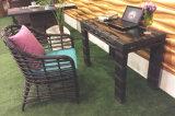 Tabella Furniture-107 esterno del rattan di svago