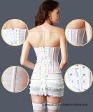 Frauen-transparenter Spitze-Taillen-Former-Stahl ohne Knochen Taillen-Kursleiter-Korsett