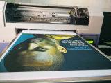 Impresora plana caliente de materia textil de Digitaces con diseño colorido