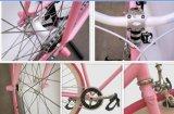 جير عالية الجودة Cromo الصلب 700C ثابت دراجة دراجة