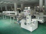 Máquina de empacotamento horizontal automática (QNF450B/L)