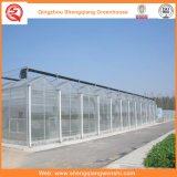 꽃을%s 농업 또는 상업적인 폴리탄산염 장 정원 온실