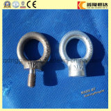 Oeil à queue filetée 1168 modifié d'acier inoxydable