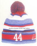 2016 exporté vers l'Europe, le chapeau tricoté brodé de chapeau et le chapeau de Beanie de l'hiver