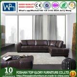 Il sofà di cuoio moderno ha impostato (TG-AH61)