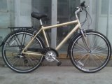 Алюминиевое Frame Tuoring Bicycle Female и Male Bike (FP-MTB-A010)