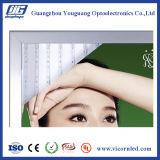 Spessore differente della casella chiara a schiocco illuminata del blocco per grafici LED per Esterno-YGQ