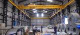 Qd 모형 두 배 광속 기중기를 드는 50 톤 훅