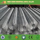 Der 1/2 Zoll galvanisierte das geschweißte Ineinander greifen, das in China hergestellt wurde