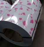 La bobine en acier enduite d'une première couche de peinture de PPGI avec on colorent