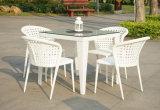 屋外の庭白の藤のダイニングテーブルおよび椅子(DS-06012W)