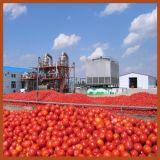 30 Years Experience Jd Tomato Paste Machineを使って
