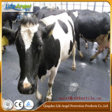 Couvre-tapis de remorque de cheval de vache utilisé dans les gammes de produits, nattes de cheval de vache