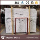 Lajes grandes de mármore novas de Bianco Statuario Michelangelo para paredes do banheiro