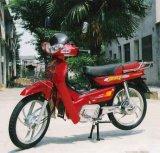 Scooter/moto/bicyclette électriques (GCA-11)