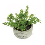 Decoratieve Kunstmatige Installatie Succulente Pinecone in de Pot van het Cement