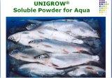 Unigrow solubile in acqua per acquicoltura, miglioramento di qualità dell'acqua