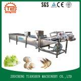 Multifunktionsluftblasen-Unterlegscheibe-Frucht-Gemüse-Wäsche-Maschinen-Reinigungs-Maschine