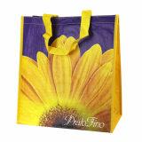 Il sacchetto impaccante dell'elemento portante, stampa su ordinazione di marchio è benvenuto (14040102)