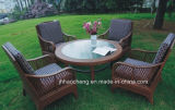 セットおよび屋外の藤の家具を食事するHc-W-D23藤