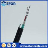 Aéreo Auto-Suportar o cabo ótico da fibra blindada de aço (GYFTC8S)