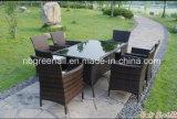 テラスの余暇の家具を食事する屋外の藤の庭の家具