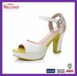 Sandali della cinghia delle donne degli alti talloni