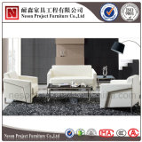 Sofá moderno com pés inoxidáveis, sofá do escritório do lazer, sofá do escritório executivo (NS-D6002)