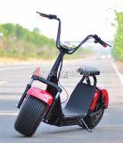 2016 scooter de Citycoco 1000W Harley de mode